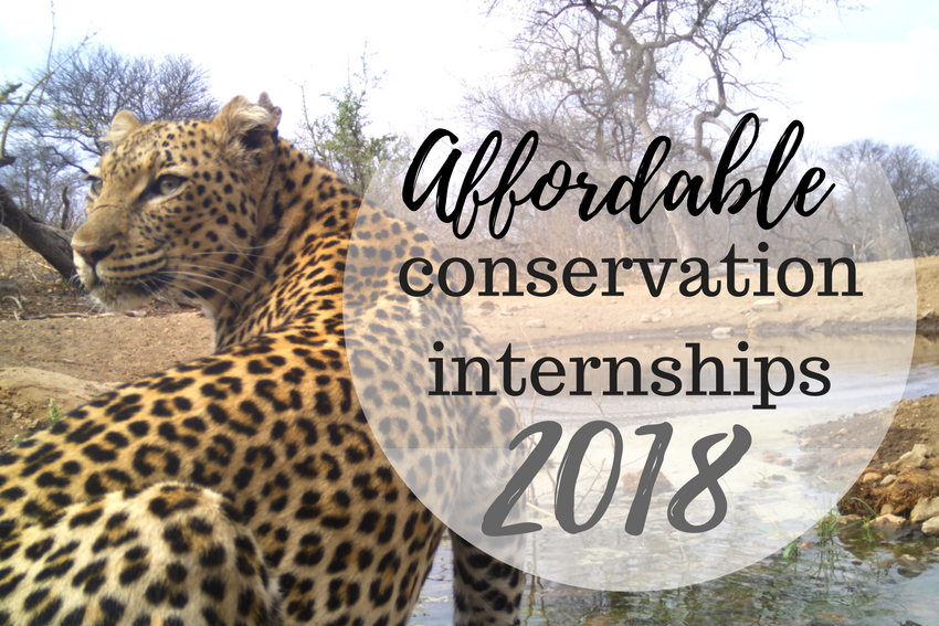 Affordable Conservation Internships 2018