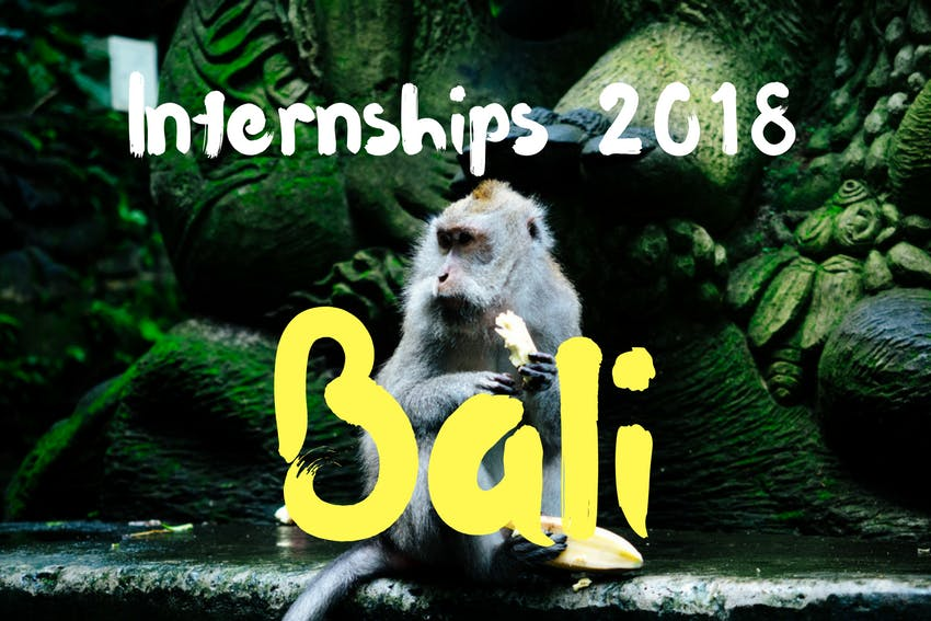 Learn everything about internships in Bali
