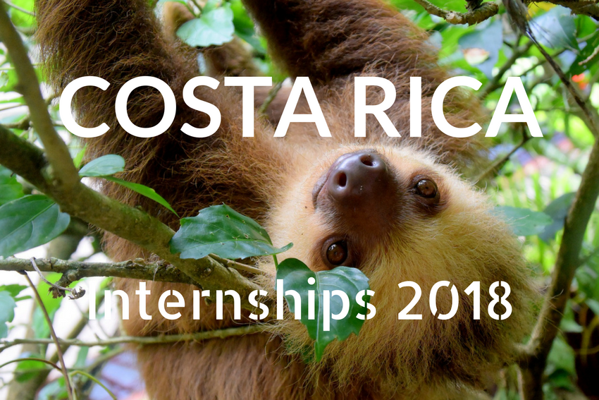 Learn everything about internships in Costa Rica for 2018