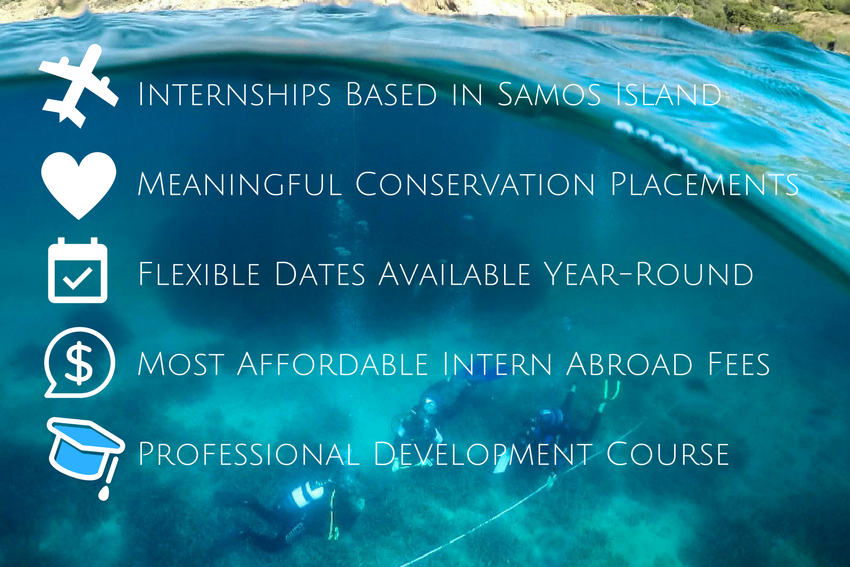 Internships in Greece