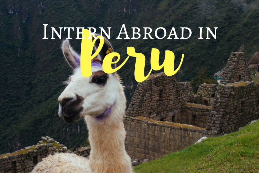 Summer Intern Abroad in Peru 2018
