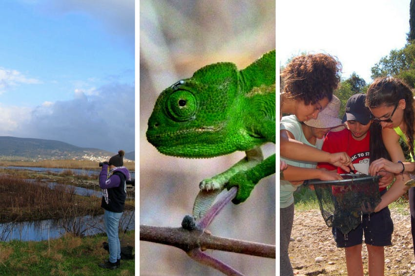 Terrestrial Conservation internship in Greece