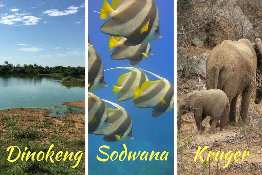 Internship experiences in South Africa
