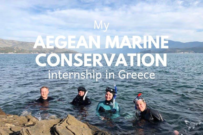 My Aegean Marine Conservation internship in Greece