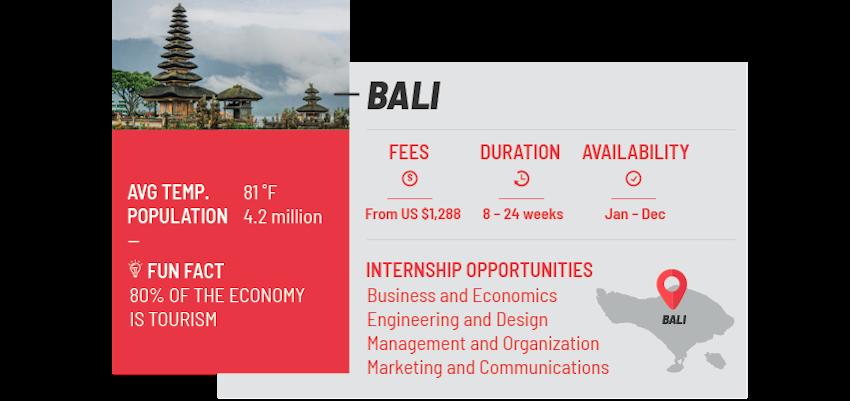 Best internship programs bali