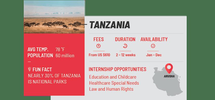 Best internship programs Tanzania
