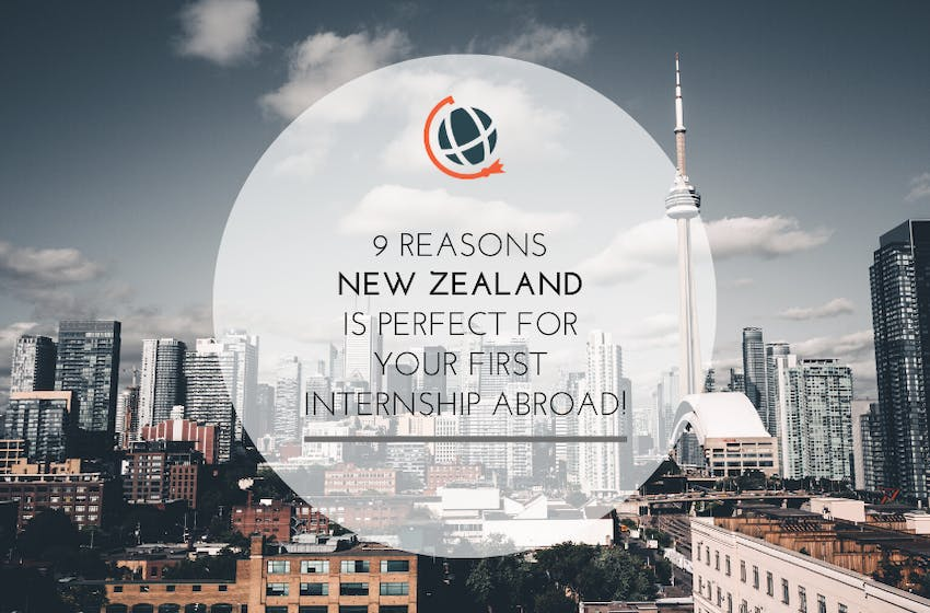 Why you should Intern in New Zealand in 2020