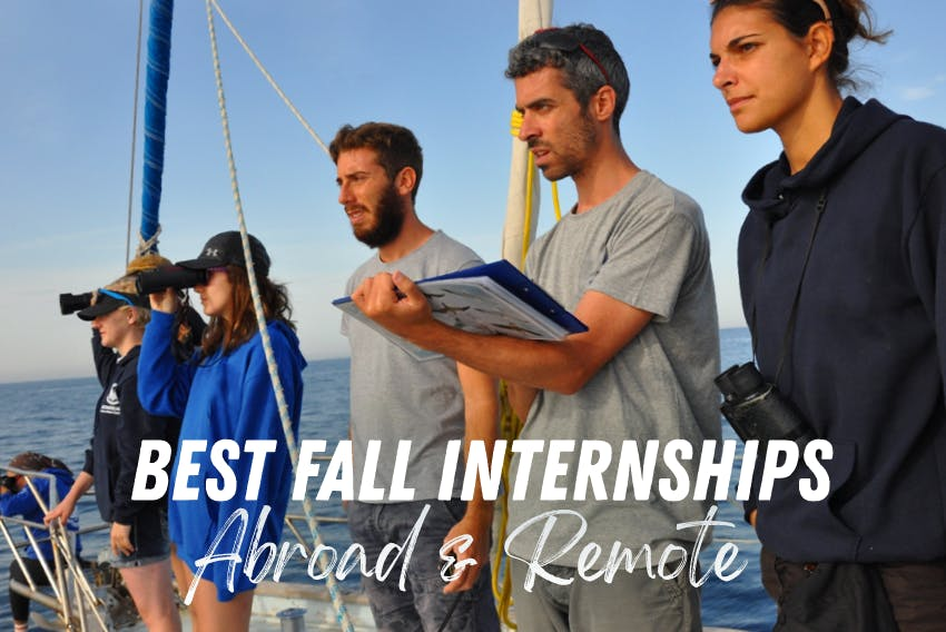 Best 2020 abroad & remote Fall internships