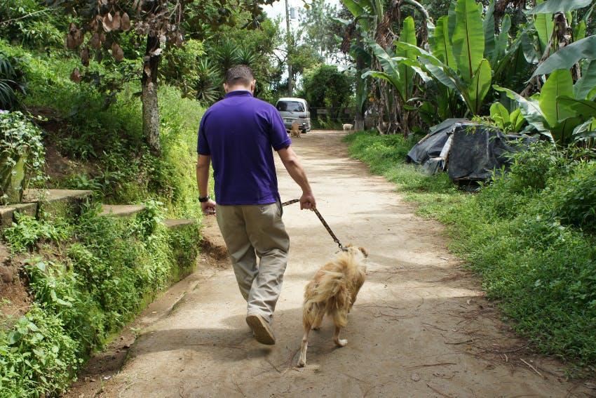 Veterinary Internship in Costa Rica