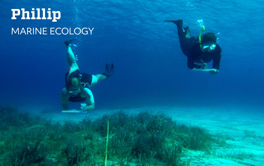 Phillips's Remote Marine Ecology in GIS Spatial Analysis Internship Experience with Intern Abroad HQ.