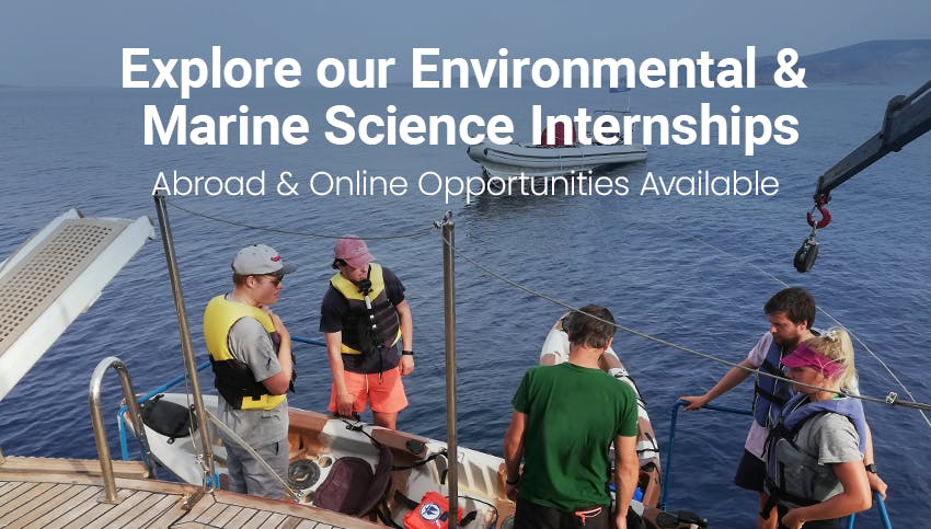 Explore Intern Abroad HQ's Environmental & Marine Science Internships - Abroad & Remote opportunities available.