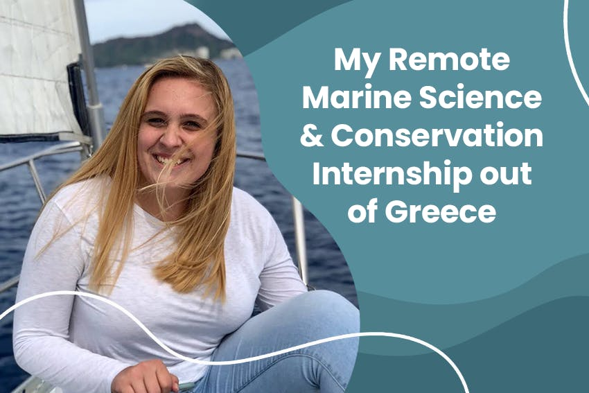 My Remote Marine Science & Conservation Internship out of Greece with Intern Abroad HQ.