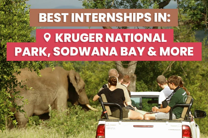Best Internships in Africa for 2020 & 2021 with Intern Abroad HQ.