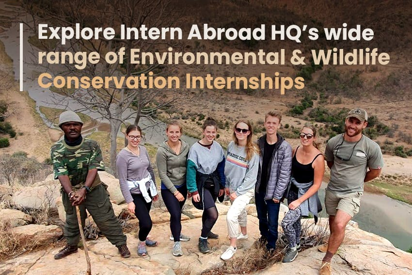 Explore Intern Abroad HQ's wide range of Environmental & Wildlife Conservation Internships.