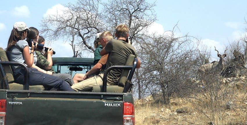 Intern Abroad HQ Reserve Management Wildlife Conservation Internship in Kruger National Park, South Africa, Kruger National Park.