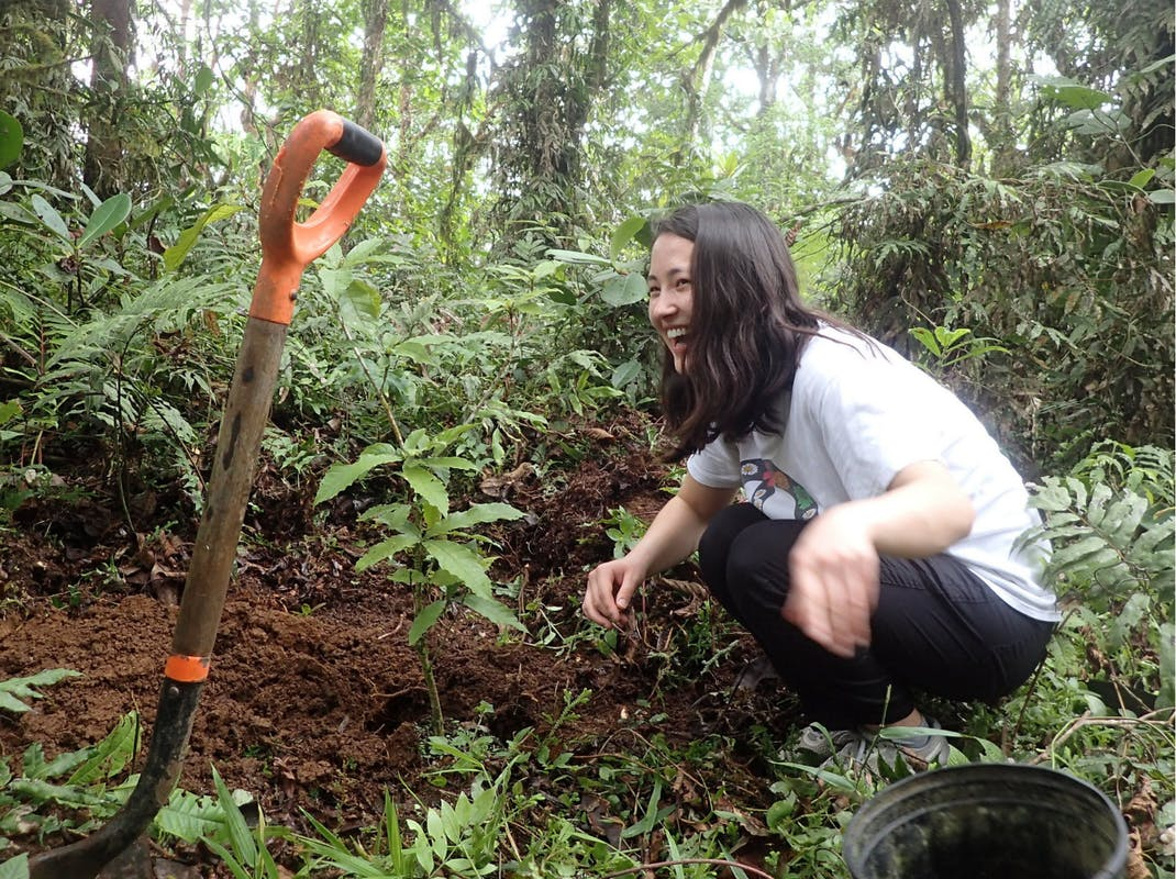 Environmental conservation intern in Costa Rica