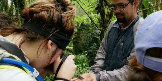 Environmental Conservation Internships in Costa Rica