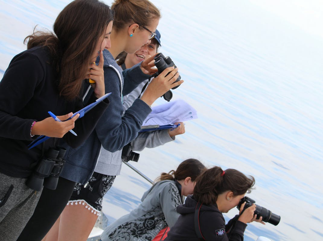 Environmental internship students in Greece