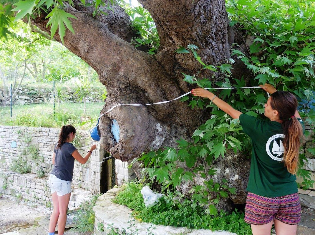 Terrestrial Conservation internships in Greece