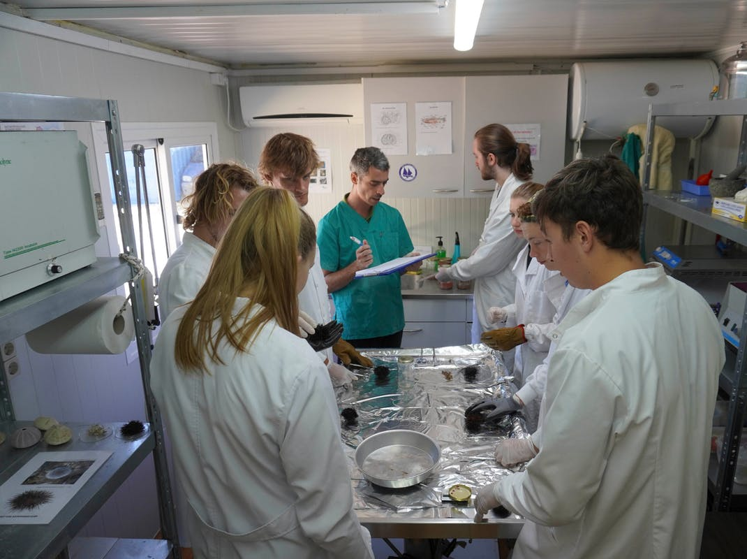 Microplastics laboratory internships in Greece