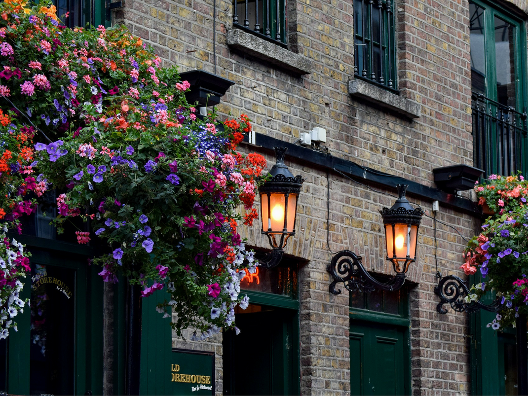 Brick building and flowers in Dublin Ireland
