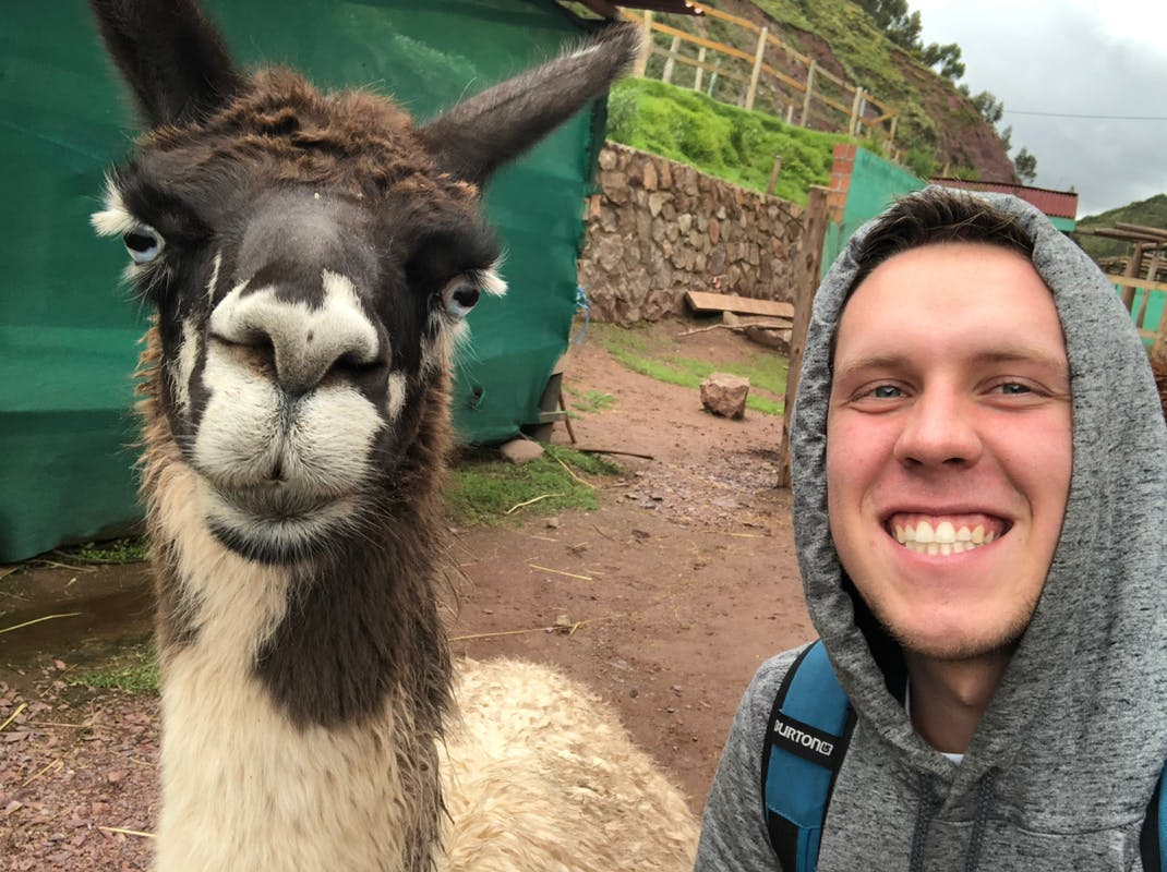 Intern poses with a cute llama in Peru