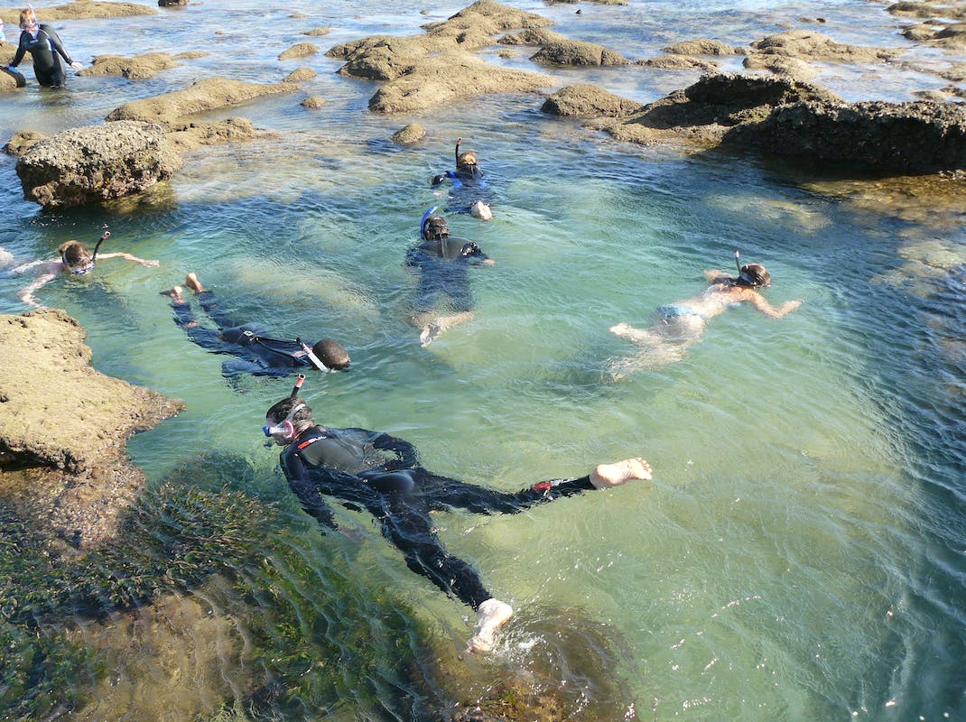 Snorkel in the rock pools, Marine Biology and Reef Conservation, Intern Abroad HQ