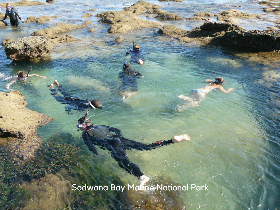 Marine Conservation Internships in Sodwana Bay interns snorkel in the rock pools