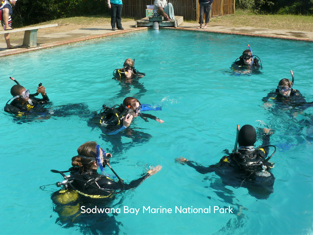 Marine Conservation Internships in Sodwana Bay interns learn to dive