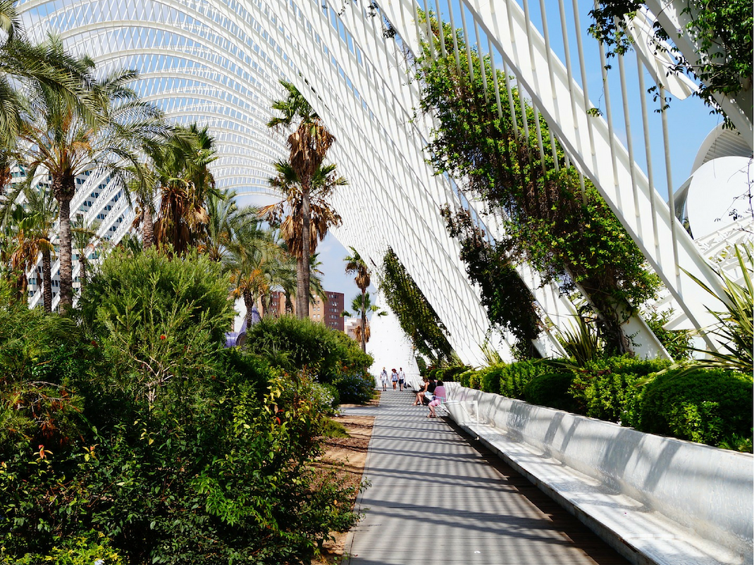 Explore the City of Arts and Sciences architectural complex in Valencia, Spain, Intern Abroad HQ