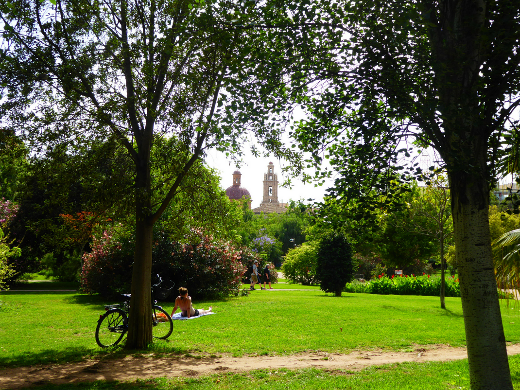 Relaxing in the green zone of Valencia, Intern Abroad HQ