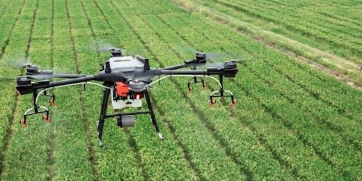 Agriculture Remote Internships
