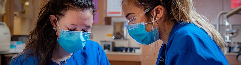Dentistry Internships with Intern Abroad HQ